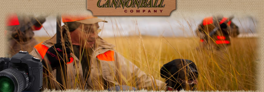 Pheasant Flying provided by Cannonball Company - pheasant hunting in North Dakota